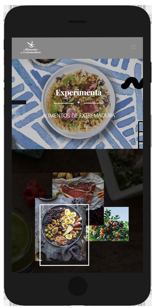 web-alimentos